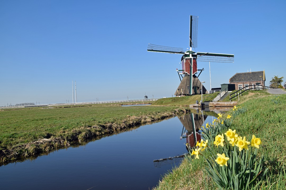 Fietsvakantie Hoogmade Hollands Waterlandschap