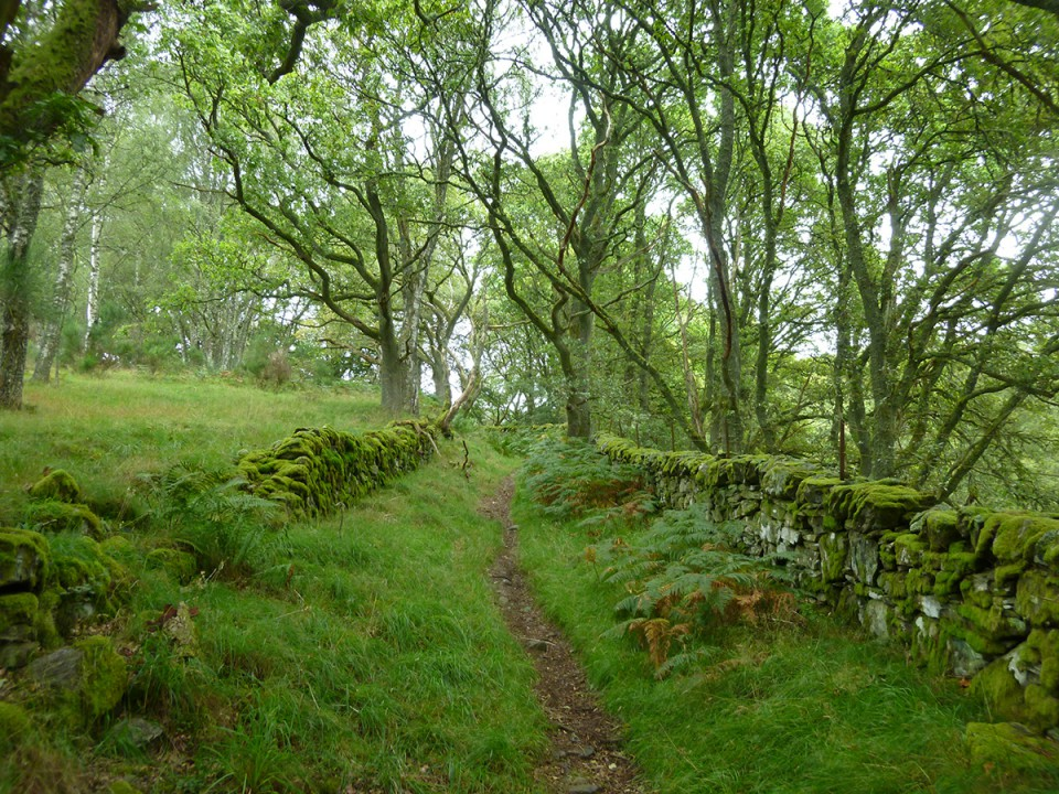 Rob Roy Way wandelvakantie